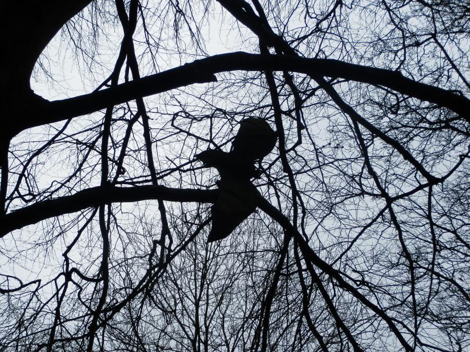 Bat Sculpture in Serbourne Park