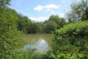 Overton Walk (6) 4 June 17