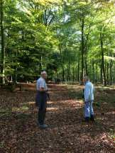 Blackwood Forest Trail. 2jpg
