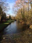 trout stream