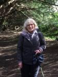 Pauline Yew Treewalk