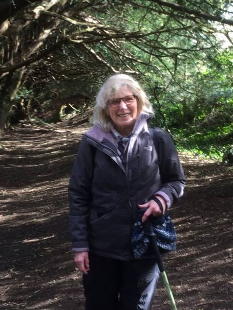 Pauline Yew Tree walk