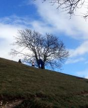 St Catherines Hill 2