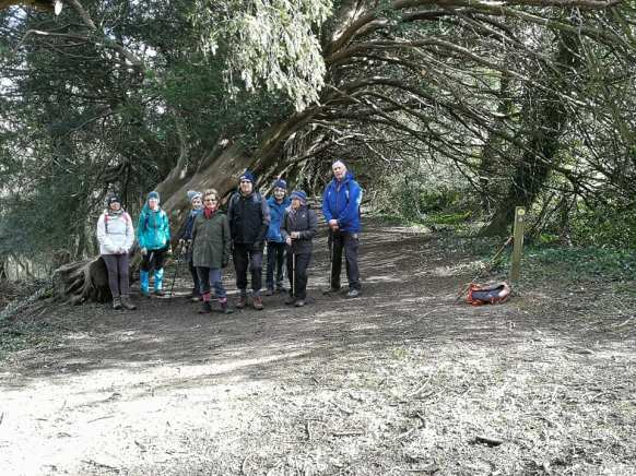 Yew Tree Path